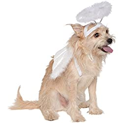 Rubie's Costume Co Angel Halo and Wings Pet Costume Accessory Set, Small to Medium
