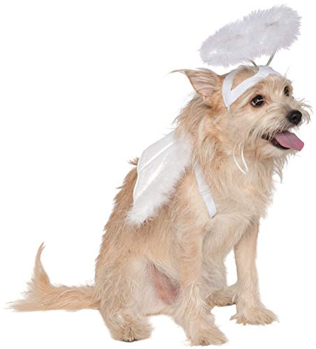 Rubie's Angel Halo and Wings Pet Costume Accessory Set, Medium to Large, Multicolor -