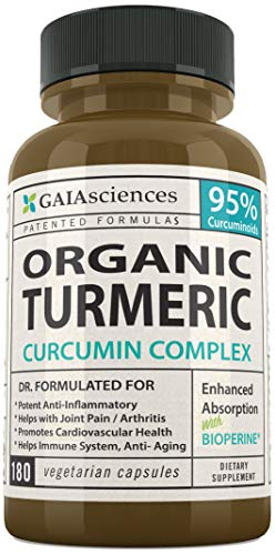 Cheap Gaia Sciences Turmeric Curcumin Bioperine 180ct 2100mg 95% Standardized Best Absorption Black Pepper Extract, Anti-Inflammatory, Joint Pain Relief, Immune System Liver Detox Booster, Organic Capsules