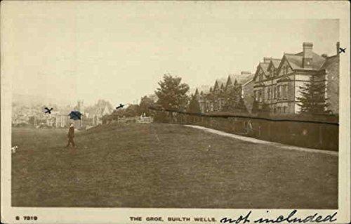 - The Groe Builth Wells, Wales Original Vintage Postcard