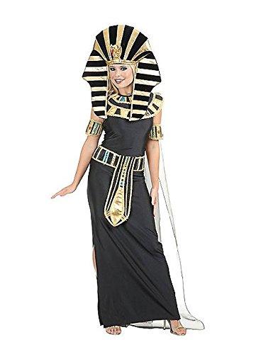 Egyptian Nefertiti Adult Costume - (Nefertiti Halloween Costumes)
