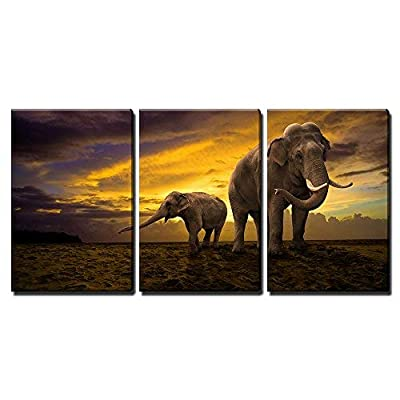 Elephants Family on Sunset x3 Panels - Canvas Art