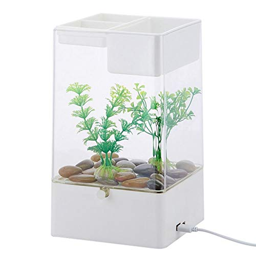 (Splendidsun Desktop Aquarium, Self-Cleaning Free Water Lazy Mini Small Acrylic Gold Fish Tank with LED Color Lighting Cube Aquarium Starter Kit with Base)