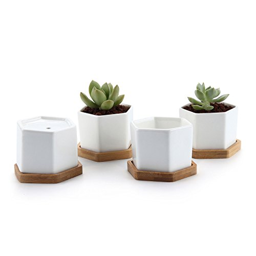 T4U 2.75 White Ceramic Pots Hexagon Succulent Cactus Planter with Free Bamboo Tray for Home Decoration 1 Pack of 4