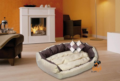 Best For Pets Orthopädisches Hundebett mit TÜV Qualität DELUXE 5 Große Hundekissen Ortho-MEDIC VISCO KISSEN (XXL, CAPPUCCINO)