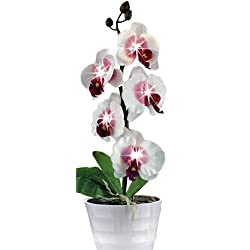 ToolUSA 5 Beautiful, Potted, White, Pink And Fuchsia Orchids, With Led Mood Lighting In Each Flower: LK-LKCO-92225