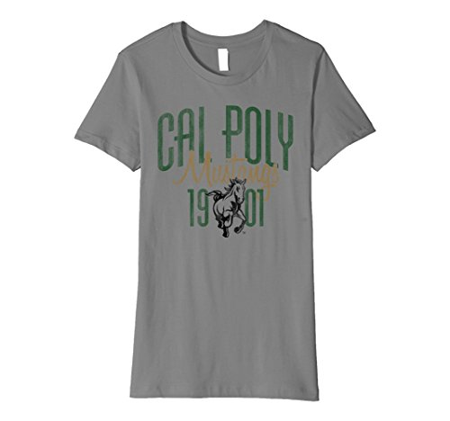 Womens Cal Poly SLO Mustangs T-Shirt CH9DY17 Large Slate