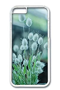 iPhone 6 Case, Custom Design Covers for iPhone 6 PC Transparent Case - Spring White Flower