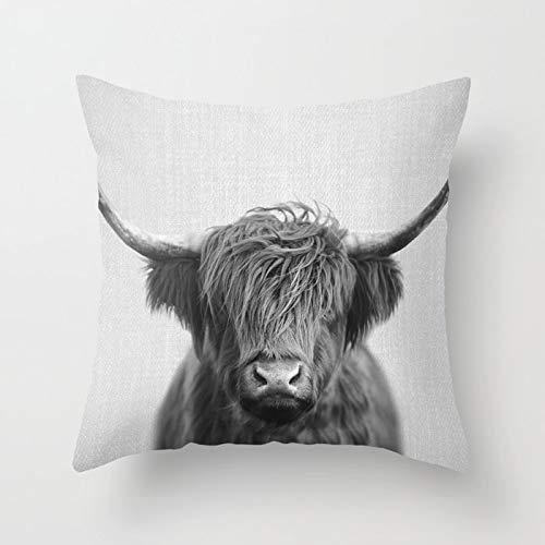 Decorative Square Throw Pillow Cover Cushion Case Cover for Sofa Bedroom Car Home Decor Design 18x18 Inch 45x45cm - Highland Cow Black White