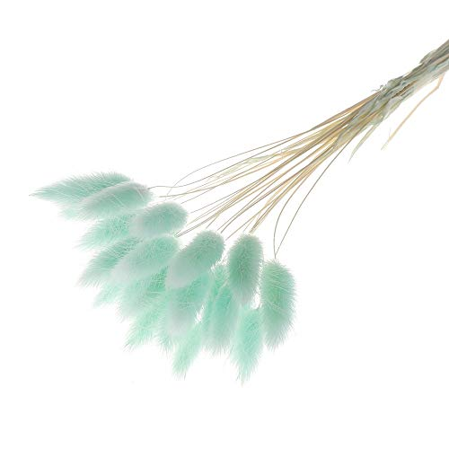 Fuleewoo 20pcs Natural Artificial Dried Flowers Colorful Fake Rabbit Tail Grass Dried Flowers Bouquets Pastoral Style Party Supplies(Light Blue) ()