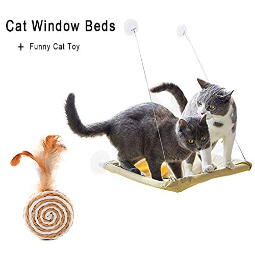 ZALALOVA Cat Window Perch, Cat Window Seat Bed Hammock Space Saving Design with 1Pc Cat Toys 1Pc Extra Suction Cup Cat Shelve All Around 360° Sunbath Holds Up to 50lbs for Any Cat Size 5