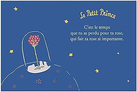 KIUB Carte Horizontale dorée Le Petit Prince 10x15 cm - La Rose: Amazon.fr:  Cuisine & Maison