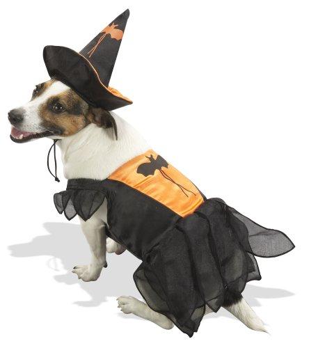Orange Witch Halloween Pet Costume, Large, 19-28 lbs, My Pet Supplies
