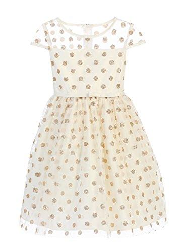 Sweet Kids Glitter Polka Dot Mesh Girls' Holiday Dress (2, Ivory) (Glitter Mesh Dress)