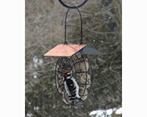 Songbird Essentials Suet & Seed Ball Feeder Copper Roof Wild