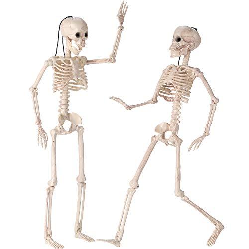 BBTO 2 Pack 15.75 Inch Halloween Skeleton, Full Body Posable Halloween Skeleton with Movable Joints for Halloween Decor
