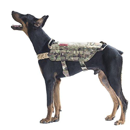 Dog In Training Vest Amazon