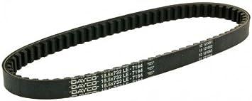 Keilriemen DAYCO Typ 732mm f/ür Zip 2 50 DT 00-09 ZAPC250
