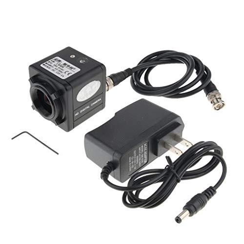 Prettyia 1200 TVL 1/3 Digital Industry Microscope CCD Camera BNC/AV Color Video Recorder + C Mount Lens Ccd Color Industrial Video Camera