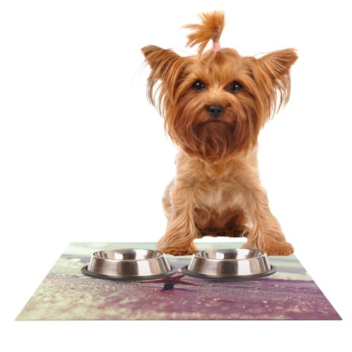 KESS InHouse Libertad Leal You are a Star  Feeding Mat for Pet Bowl, 18 by 13-Inch