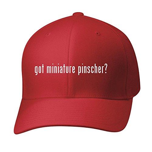 BH Cool Designs Got Miniature Pinscher? - Baseball Hat Cap Adult, Red, Large/X-Large (Ornaments Pinscher Red)