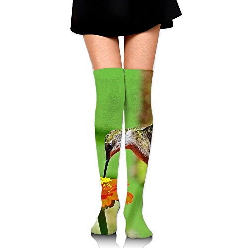 Hummingbird On A Zinnia Cotton Compression Socks For Women. Graduated Stockings For Nurses, Maternity, Travel, Flight, Pregnancy, Varicose Veins,Running & Fitness, Calf - Zinnia Flight