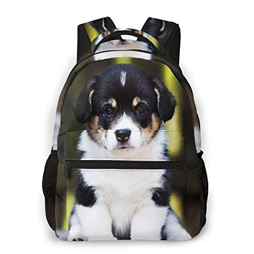 Travel Laptop Backpack Casual Backpack Bernese Mountain Dog Puppy, Anti Theft Durable Computer Bag, Water Resistant College School Bag for Women Men Fits 14 Inch Notebook