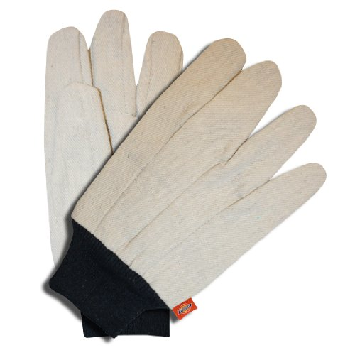 Dickies D20213 Ladies Cotton Canvas Glove, Blue Knit Wrist ()