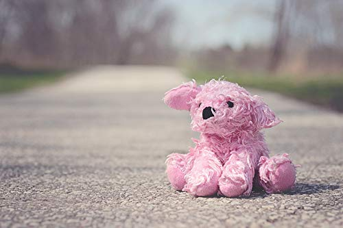 """Photography Poster - Toy, Pink, Bear, Doll, Stuffed, 24""""x16.5"""" from VintPrint"""