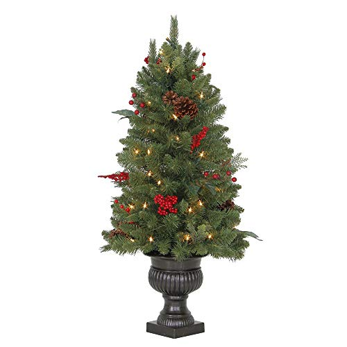 Martha Stewart Living 3 ft. Pre-Lit Winslow Fir Potted Artificial Christmas Tree with 196 Tips and 50 Clear Lights
