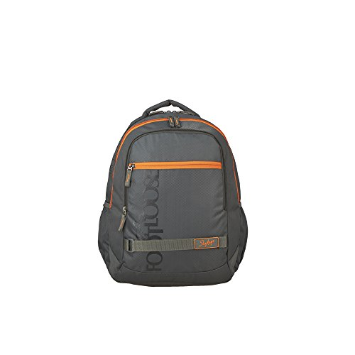 Skybags 29 Ltrs Grey Casual Backpack (BPTAZ1GRY)