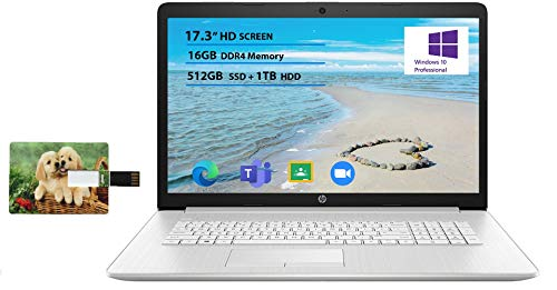 Newest HP Business Laptop, 15.6″ HD Touchscreen, 11th Gen Intel Core i3-1115G4 Processor, 16GB DDR4 RAM, 512GB SSD, HDMI, Wireless-AC Wi-Fi 5, Bluetooth 4.2, Silver, Windows 10 Pro, 32GB Tela USB Card