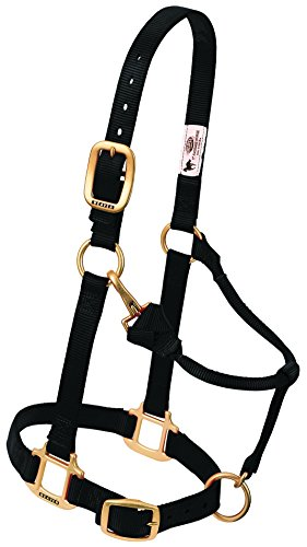 Weaver Leather Original Adjustable Nylon Horse Halter, Black, Arabian/Cob (Arabian Halter)