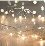 ANJAYLIA LED Fairy String Lights, 10Ft/3M 30leds Firefly String Lights Garden Home Party Wedding Festival Decorations Crafting Battery Operated Lights(Warm White)
