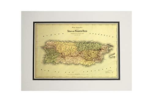 (Puerto Rico - (1886) - Panoramic Map (11x14 Double-Matted Art Print, Wall Decor Ready to Frame))