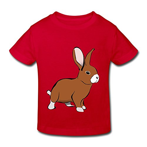Red Ninva Little Boys Girls Roundneck Bunny T Shirts For Toddlers Size 4 - Casual Jessica Biel