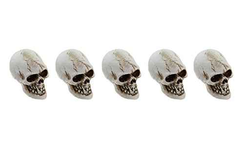 The Fiddlehead Fairy Garden Miniature Skulls Accessory Set (Set of 5) (Theme Song Angry Birds Halloween)