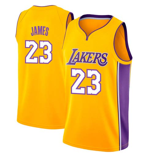 VICTOREM Lebron James #23 Camiseta de Baloncesto para Hombres - NBA Lakers, Nuevo Tela Bordada Camiseta Deportivas de Jersey Swingman (Tamaño: M-XXL): ...