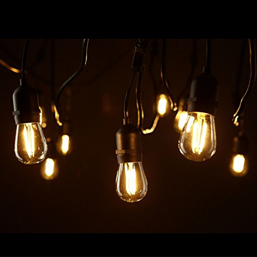 Edison String Lights Outdoor : Hyperikon LED Commercial String Lights, 48ft Outdoor String Light with 15 Dropped Sockets, 2W ...
