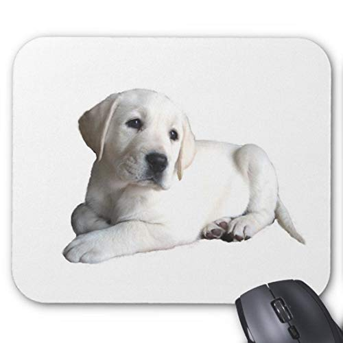 Gaming Mouse Pad Non-Slip Water Resistant Rubber Base Cloth Computer Mouse Mat-(Labrador Retriever - Labrador Black Retriever Pad Mouse