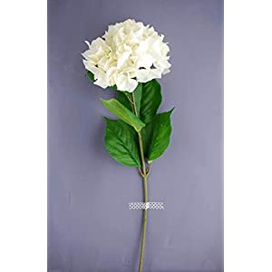 Artificial Ivory White Hydrangea Flowers 7in Bloom - Excellent Home Decor - Indoor & Outdoor 12