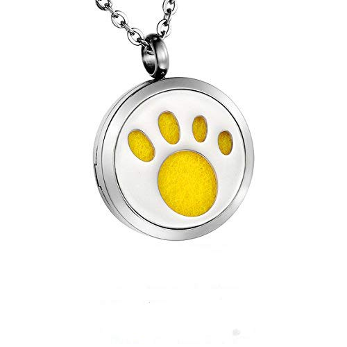 HooAMI Aromatherapy Essential Oil Diffuser Necklace - Stainless Steel Pet Paw Round Locket Pendant TY BETY106405
