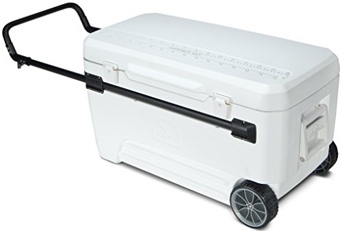Igloo Glide PRO Cooler (110-Quart, White)