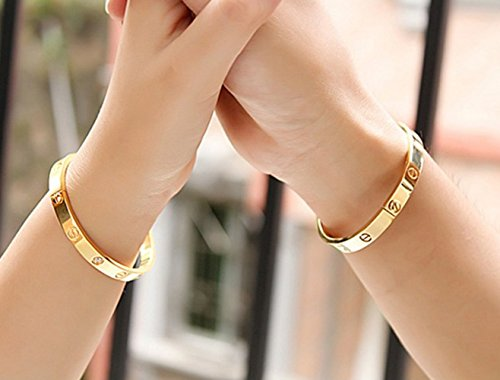 SynoTM Titanium Stainless Steel Screw Head Driver Oval Gold Bangle Bracelet for Men & Women (7.5inches)