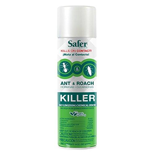 safer-brand-14-ounce-aerosol-ant-and-roach-killer-5720