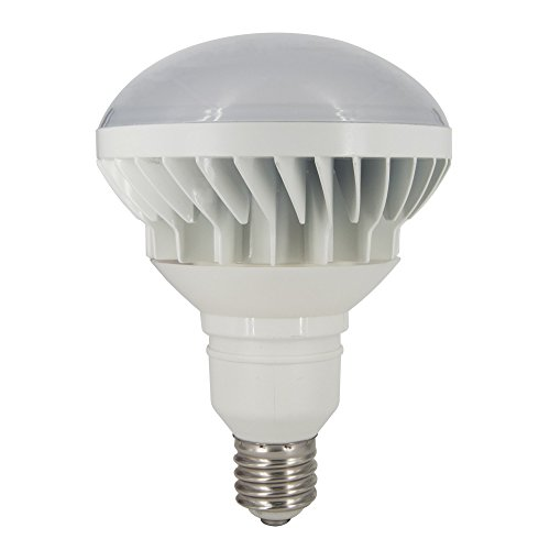 Ashia Light IP65 Waterproof LED Light PAR56 Bulb Soft White Indoor/Outdoor Lighting (40 Watts)