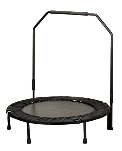 Sunny Health and Fitness foldable 40 Inches trampoline with Bar