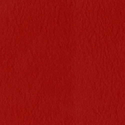 Bazzill Basics Paper T19-2095 Prismatic Cardstock, 25 Sheets, 12 by 12-Inch, Classic Red (Paper Cardstock Bazzill)