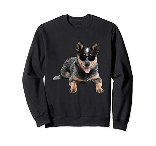 Australian Cattle Heeler Dog In Aviator Sweatshirt Dog Lover ()