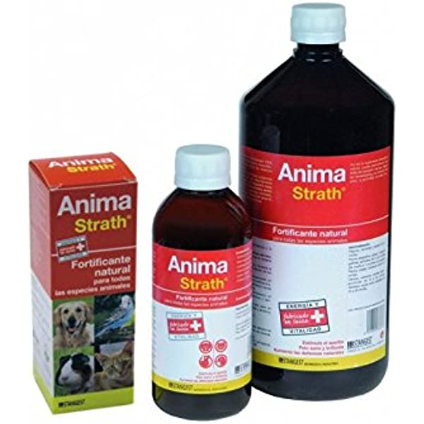 Stangest Anima Strath Complemento Nutricional - 100 ml: Amazon.es: Productos para mascotas